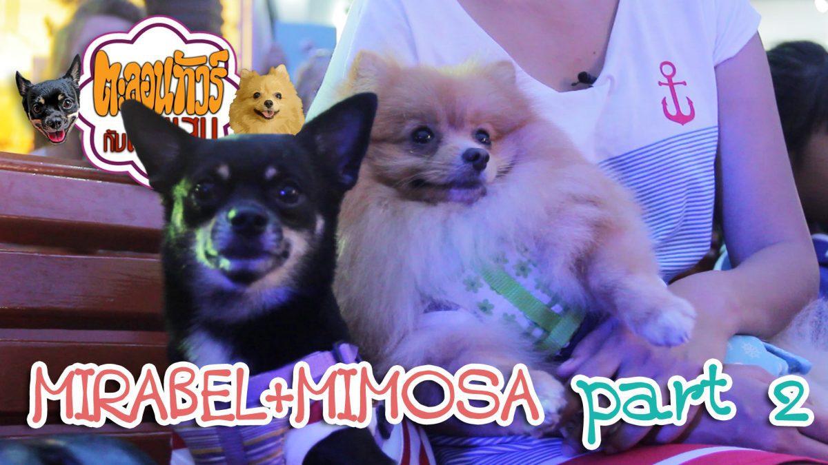 ตะลอนทัวร์กับตัวแสบ - Misabel and Mimosa 02