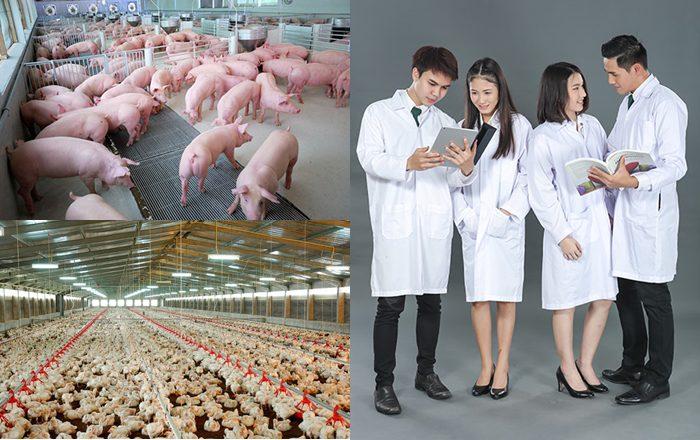 คณะอุตสาหกรรมเกษตร PIM
