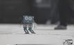 หุ่นยนต์จิ๋วพัฒนาเด็ก