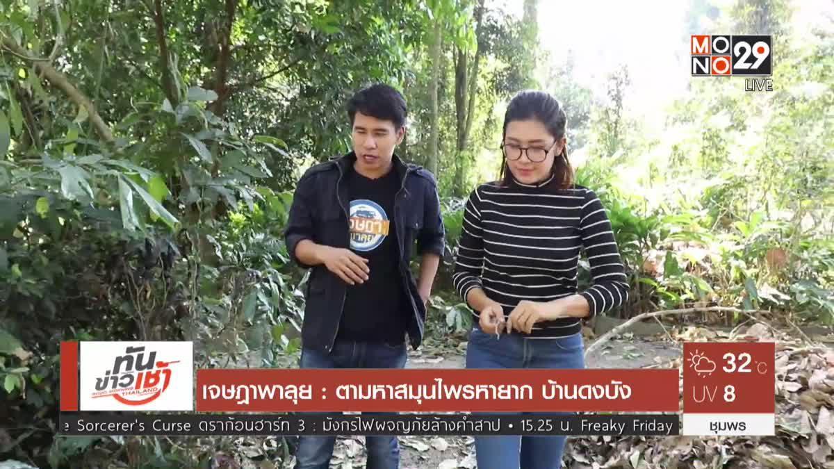 เจษฎาพาลุย : ตามหาสมุนไพรหายาก บ้านดงบัง จ.ปราจีนบุรี