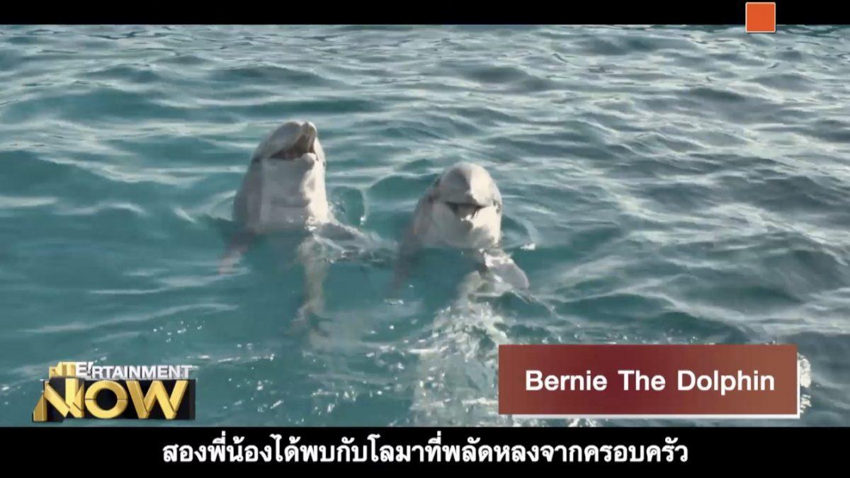 Movie Review : Bernie The Dolphin