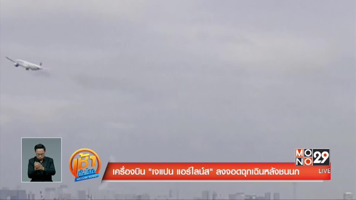 เครื่องบินเจแปน แอร์ไลน์สลงจอดฉุกเฉินหลังชนนก