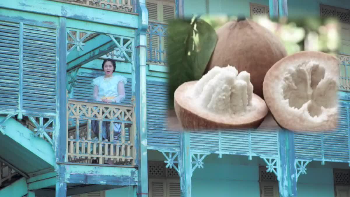 มะม่วงยายกล่ำ ของดีเมืองนนทบุรี
