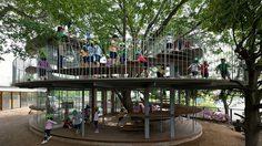 หลุดกรอบเดิมๆ โรงเรียนอนุบาลญี่ปุ่น ผุดไอเดียสร้างแหล่งเรียนรู้รอบต้นไม้