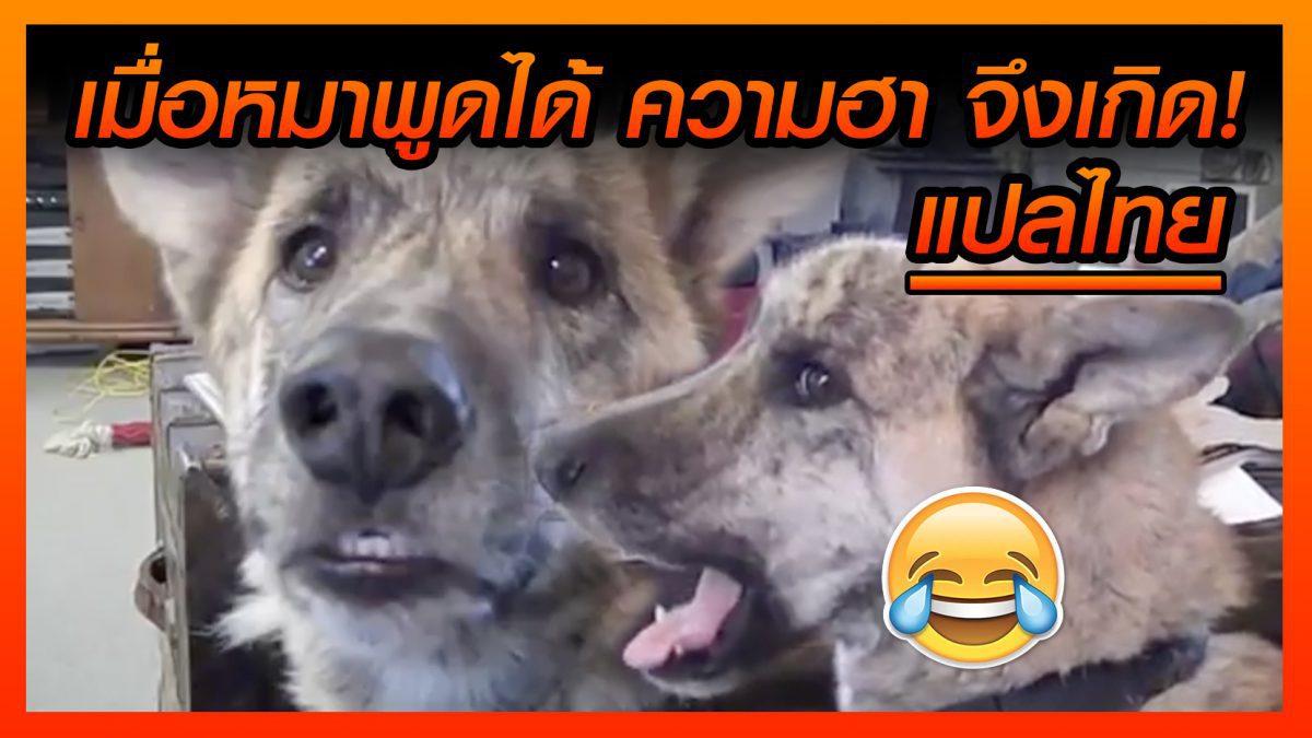 (คลิปเด็ดสุดฮา) เมื่อน้องหมาพูดได้ กับเมนูใหม่ที่ทำไว้ให้เพื่อเเกเลย