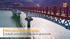 เดินชิลล์ๆ ชมวิวกลางน้ำ ที่ Woryeonggyo Bridge สะพานไม้ในเมืองอันดง เกาหลีใต้