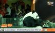 ช่วงช่วง-หลินฮุ่ย ร่วมฉลองตรุษจีน