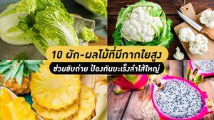 10 ผัก-ผลไม้ที่มีกากใยสูง ช่วยในขับถ่าย ป้องกันมะเร็งลำไส้ใหญ่