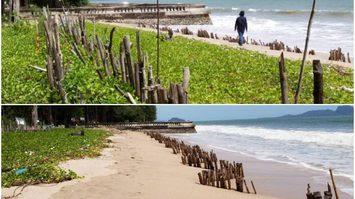 เผยวิธีง่าย ๆ ลงทุนไม่มาก ป้องชายหาดพัง จากการถูกกัดเซาะ