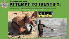ตำรวจฟลอริด้าไล่ล่าตัวสาวนิรนามแอบขโมย กัญชา ที่เกยตื้นขึ้นมาบนชายหาด