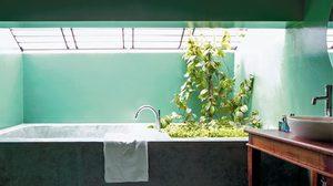 เพิ่มบรรยากาศดี๊ดีย์ในการอาบน้ำ! เติมสีเขียวให้ ห้องน้ำ BATHROOM GARDEN กัน