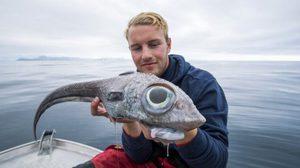 เผยโฉมปลาหนู ปลาหน้าแปลกในทะเลน้ำลึก นอร์เวย์