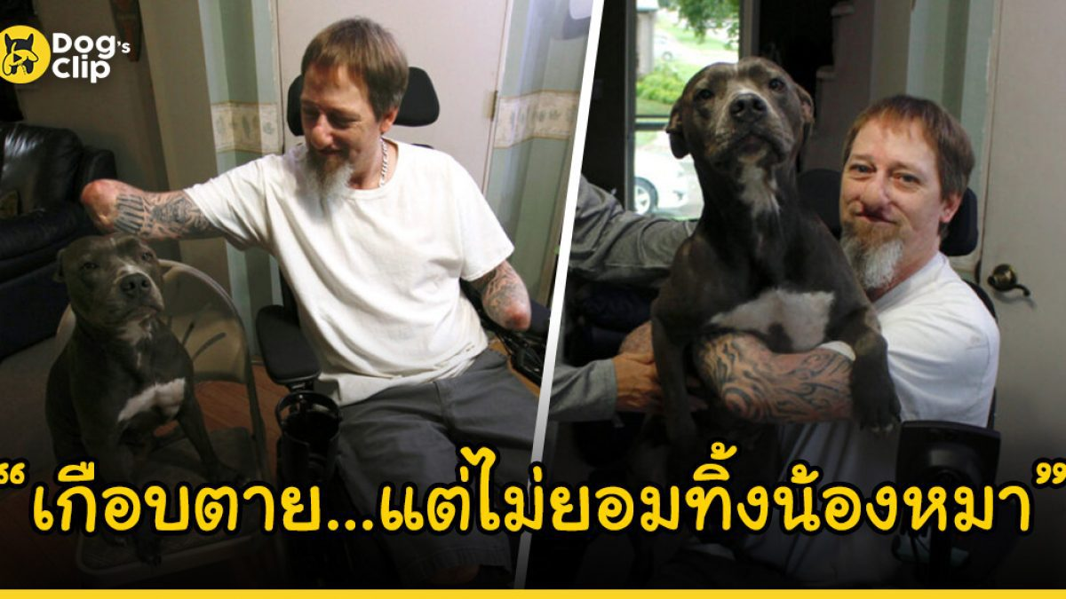 ชายเกือบต้องตายเพราะโดนน้องหมาเลีย แต่เขากลับไม่ยอมทิ้งน้องหมา