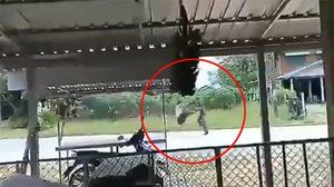 คลิปตำรวจ ถูกชายคลั่งใช้ไม้ฟาดหน้า หลังถูกถีบล้มขณะเข้าคุมตัว