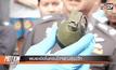 พบระเบิดในคอนโดฯย่านสุขุมวิท
