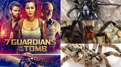 เปิดโฉมหน้า 7 แมงมุมสุดอันตราย ก่อนไปฝ่าดงพวกมันในหนัง Guardians of the Tomb