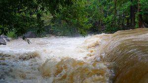 เตือน 9 จังหวัดใต้ระวัง ฝนตกต่อเนื่องสะสม น้ำไหลหลาก ดินถล่ม