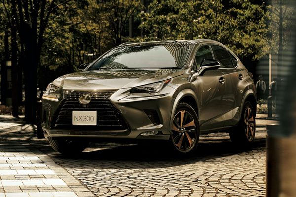 Lexus NX Bronze