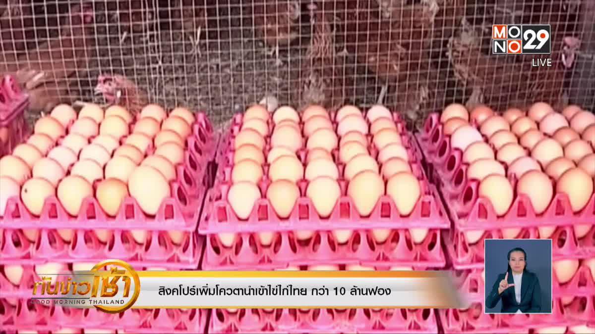 สิงคโปร์เพิ่มโควตานำเข้าไข่ไก่ไทย กว่า 10 ล้านฟอง