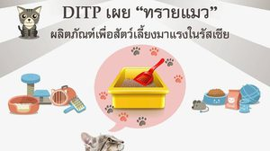 แนะผู้ส่งออกไทยศึกษาตลาด หลัง 'ทรายแมว' เป็นผลิตภัณฑ์มาแรงในรัสเซีย