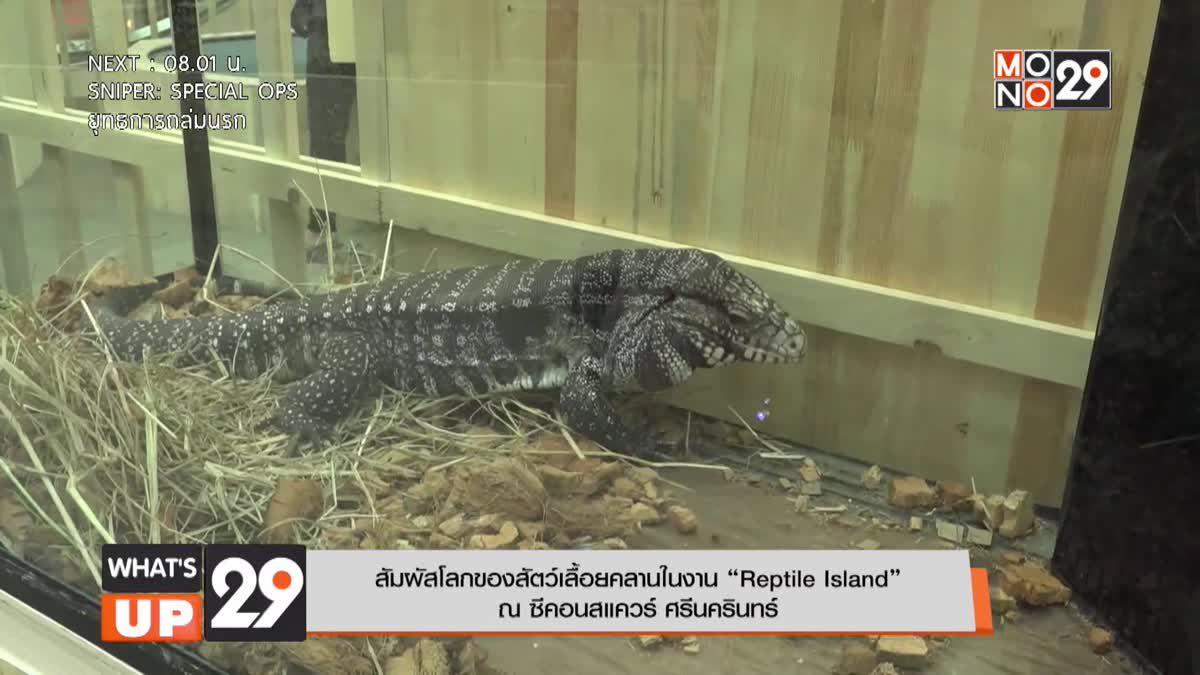 """สัมผัสโลกของสัตว์เลื้อยคลานในงาน """"Reptile Island"""" ณ ซีคอนสแควร์ ศรีนครินทร์"""