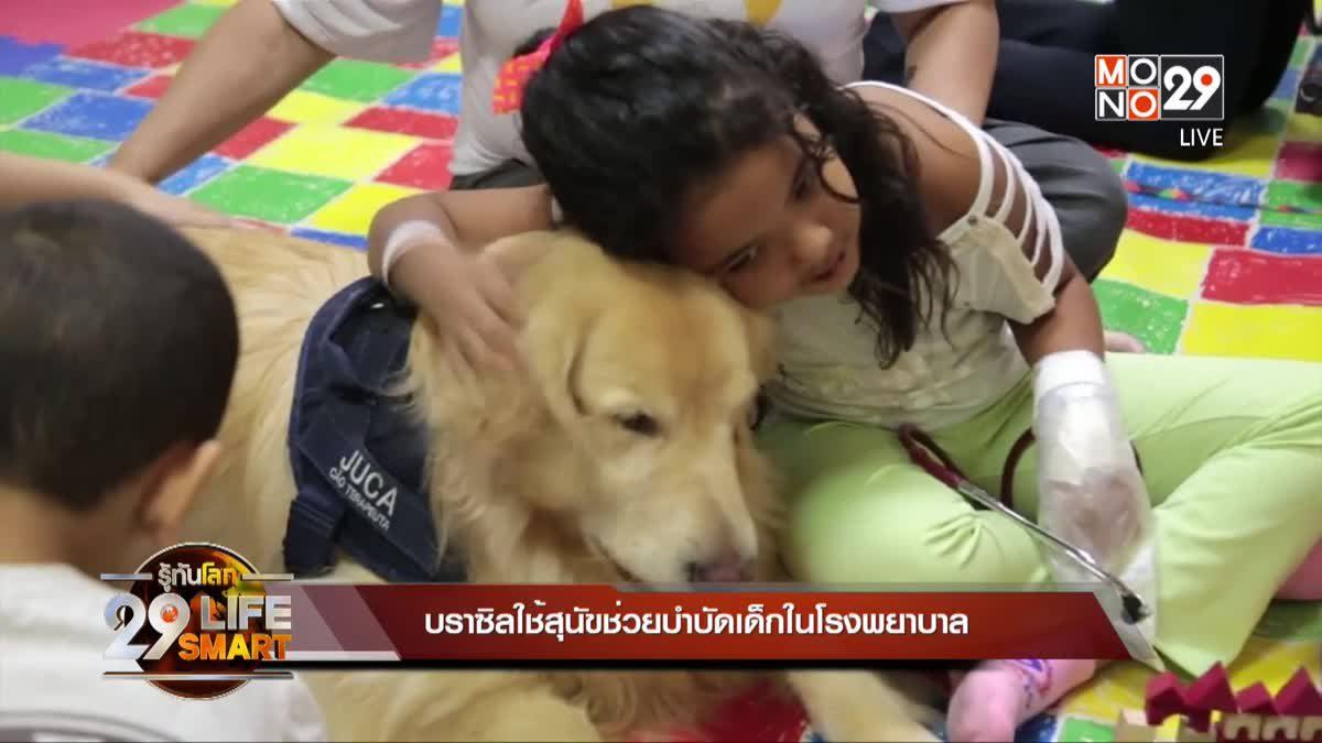 29 LifeSmart : GOOD HEALTH บราซิลใช้สุนัขช่วยบำบัดเด็กในโรงพยาบาล