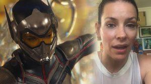 ตัวต่อ ต่อย เดอะวอสป์!! นักแสดงสาว Ant-Man and the Wasp ลงคลิปเผยอาการบวมที่ข้อมือ