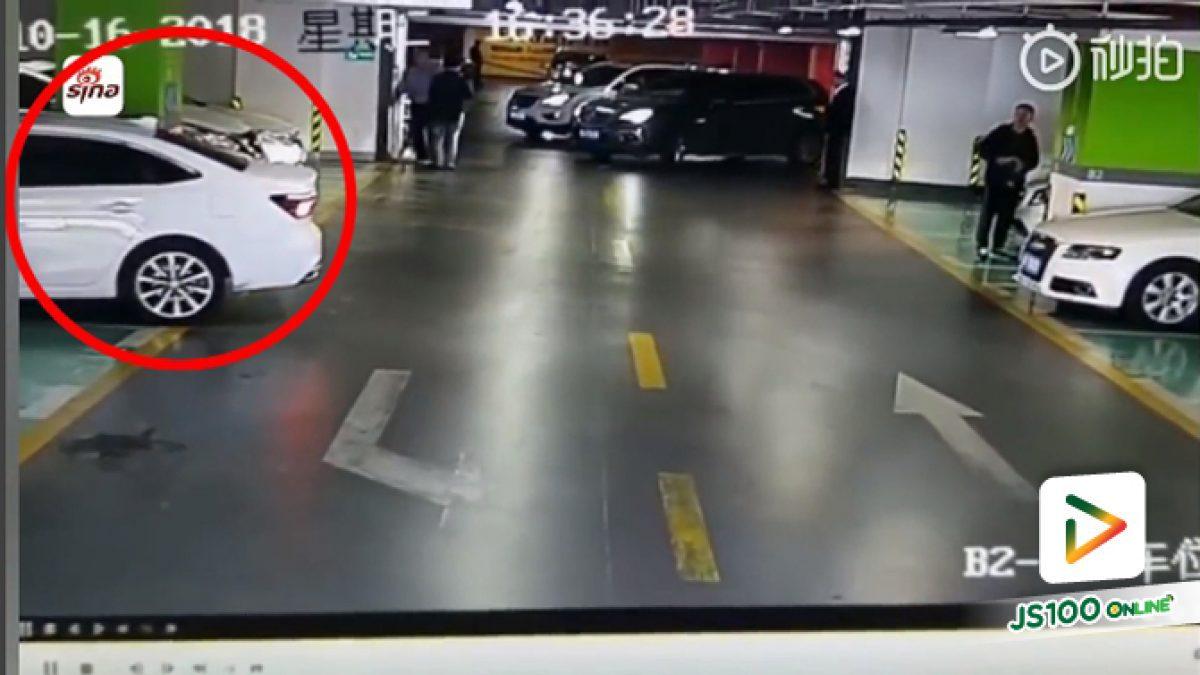 สาวถอยรถพลาดแรง เฉี่ยวชนรถหรู 3 คันติด แล้วขับออกไปดื้อๆ เหตุเกิดที่ต่างประเทศ (27-11-61)