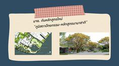 มจธ. ดันหลักสูตรใหม่ ภูมิสถาปัตยกรรม-หลักสูตรนานาชาติ หนึ่งเดียวในไทย มุ่งสร้างภูมิสถาปนิกออกแบบเพื่อความยั่งยืน
