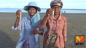 วิถีชาวบ้าน! กับสุดยอดเมนูอาหารจาก 'ไส้เดือนทะเล'