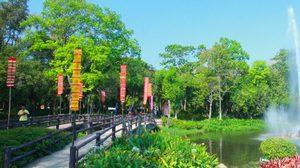 เทศกาลดอกลำดวนบาน สืบสานประเพณีสี่เผ่าไทยศรีสะเกษ