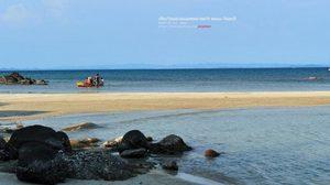 เที่ยว เกาะมันใน ชมการอนุรักษ์เต่าทะเลในไทย