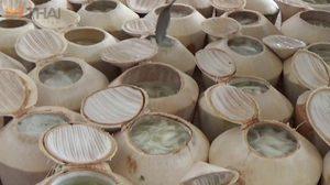 วุ้นในลูกมะพร้าว ของอร่อยดับร้อน สร้างรายได้