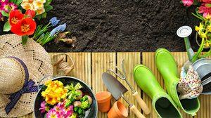 5 ไอเดียเจ๋งๆ เปลี่ยน สวนในบ้าน ให้สวยขึ้น