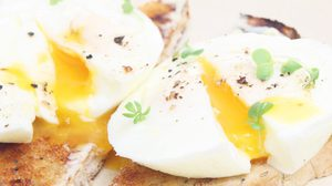 กินไข่ ทำให้แผลปูด เป็นแผลเป็น จริงหรือไม่?
