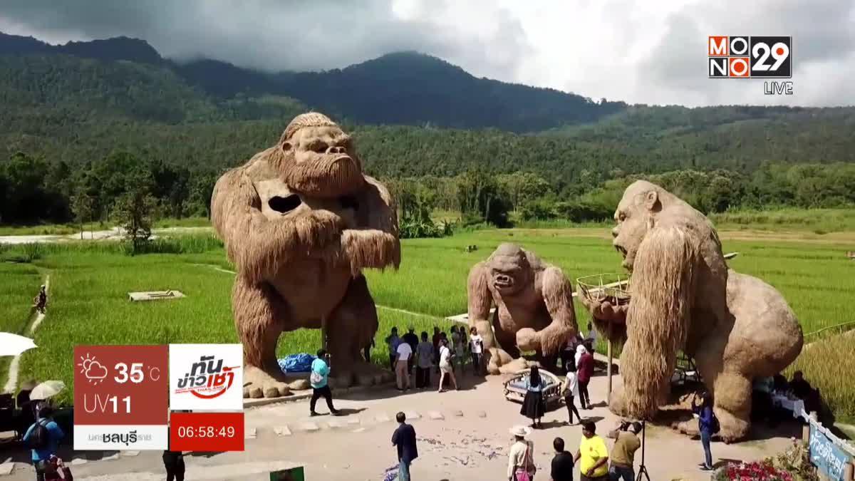 ฮือฮา หุ่นฟางคิงคองยักษ์ ใหญ่สุดในโลก