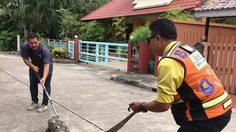 งูเหลือม ใหญ่เกือบ 5 เมตร เขมือบสุนัข อิ่มจนแน่นเลื้อยต่อไม่ไหว