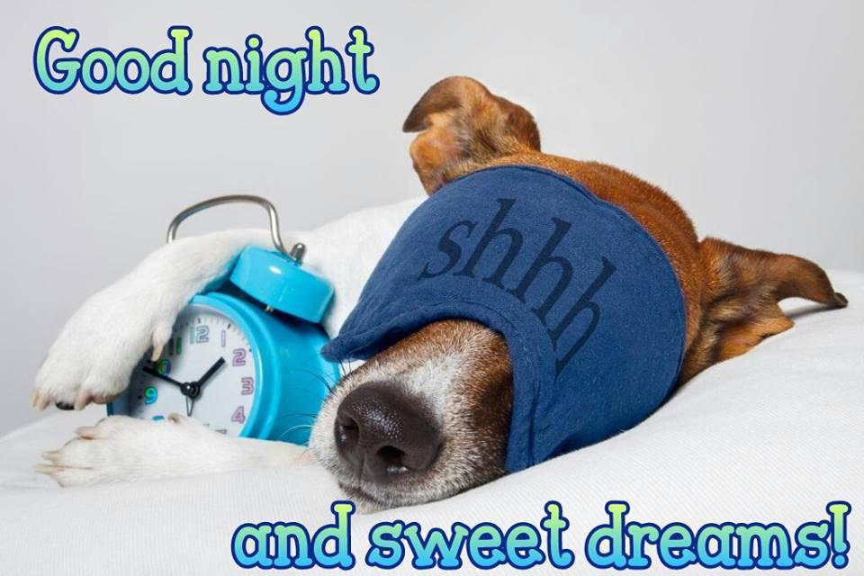 good-night_042