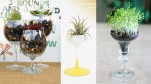 น่ารักเว่อร์! 9 ไอเดีย สวนขวด ใช้แก้วทรงสูงปลูกพืชขนาดเล็ก