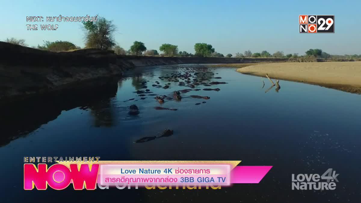 Love Nature 4K ช่องรายการสารคดีคุณภาพจากกล่อง 3BB GIGA TV
