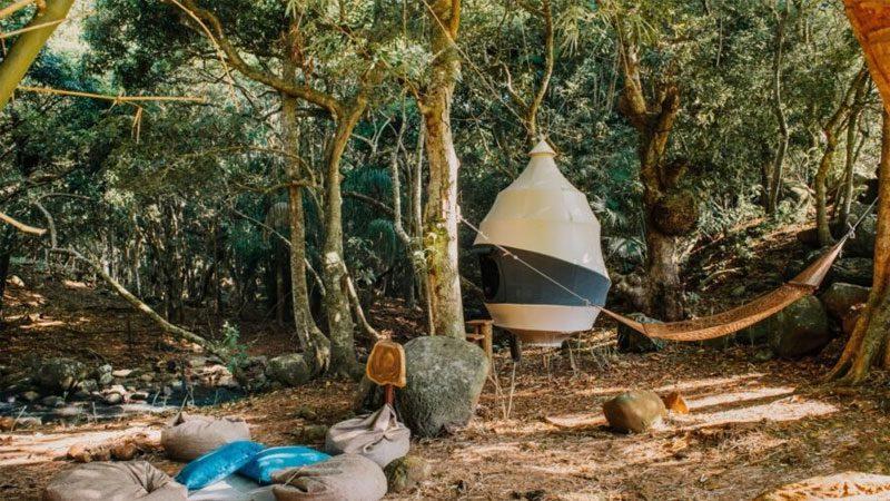 บ้านต้นไม้ สไตล์รังนกที่อยู่อาศัยแบบไม่เบียดเบียนธรรมชาติ