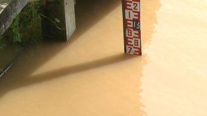 คืบหน้าระดับแม่น้ำโขงที่นครพนม ล่าสุดห่างตลิ่งที่ 29 เซนติเมตร