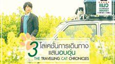 เปิด 3 โลเกชั่นสุดอบอุ่น สถานที่ถ่ายทำหนัง The Travelling Cat Chronicles