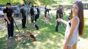 น้องไอ RSC กับภารกิจฝึกสุนัขตำรวจ สุด CUTE!!