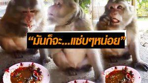 """แชร์เป็นหมื่น!! คลิป """"ลิงจกส้มตำ"""" กับท่านั่งกินสุดแซ่บ"""