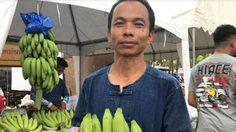 ข้าราชการสุรินทร์ ปลูกกล้วยหอมทองขาย รับเงินเหนาะๆ เฉียด 3 แสนต่อปี