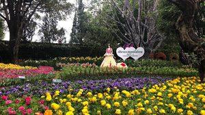 แอ่วเหนือไปชมงาน เชียงรายดอกไม้งาม ครั้งที่ 15 และกิจกรรมดนตรีในสวน