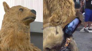 อดีตพิธีกรดังแต่งคอสเพลย์เป็นหมียักษ์ ลากศพ ลีโอนาร์โด ดิคาปริโอ ทั่วงาน Comic Con
