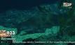 เปิดอาณาจักรฉลามจ้าวสมุทร ที่ SEA LIFE Bangkok Ocean World