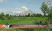 เกษตรกรอินโดนีเซียเร่งเก็บเกี่ยวพืชผล  หวั่นภูเขาไฟระเบิด
